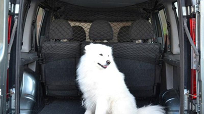 вертикальная сетка для собак