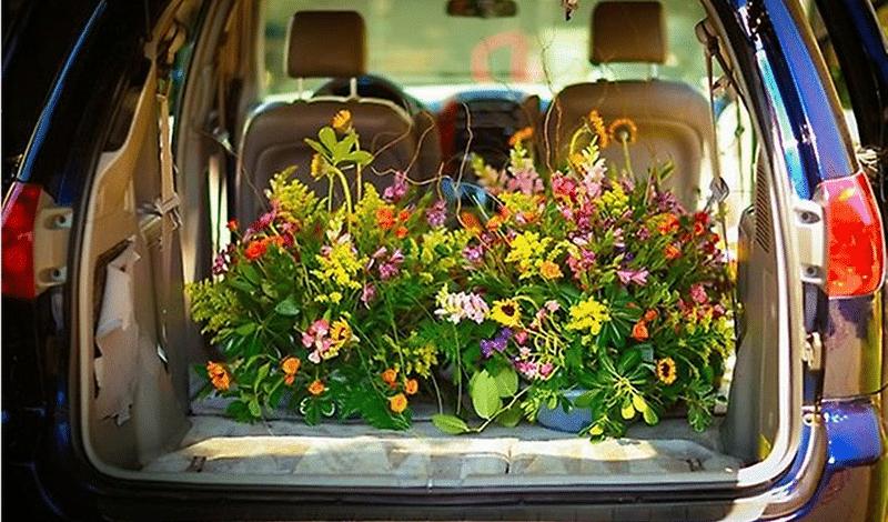 Как сделать запах в автомобиле 434