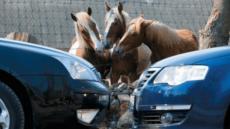 как пересчитывается перевод киловатт в лошадиные силы