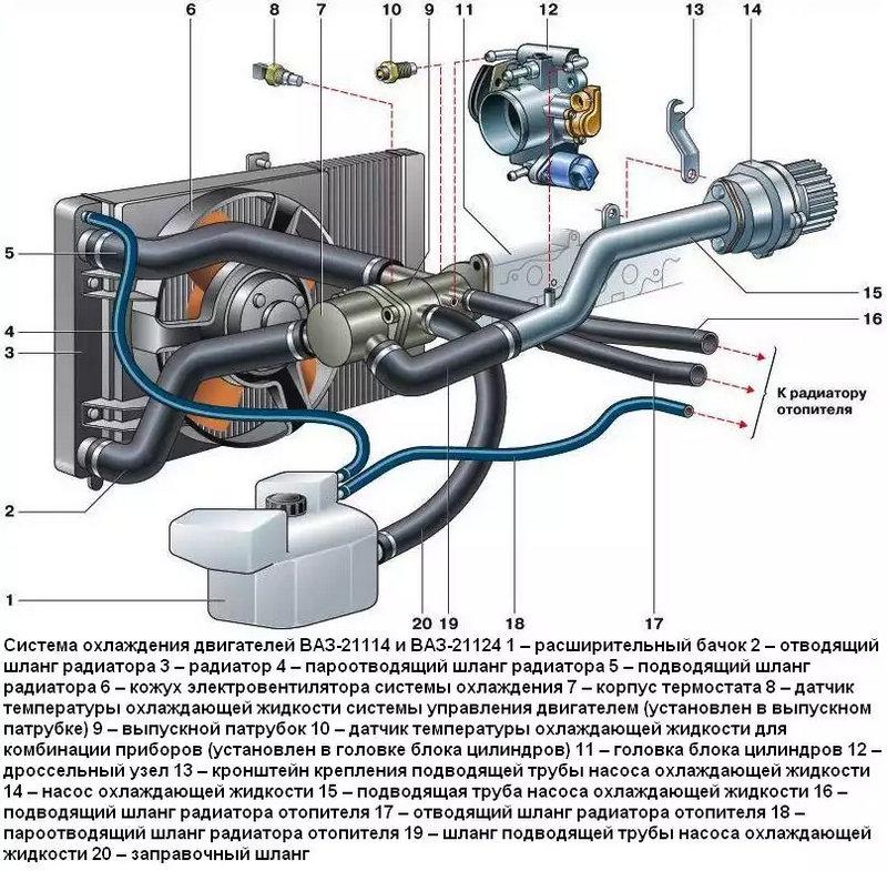 где смотреть устройство радиатора охлаждения двигателя